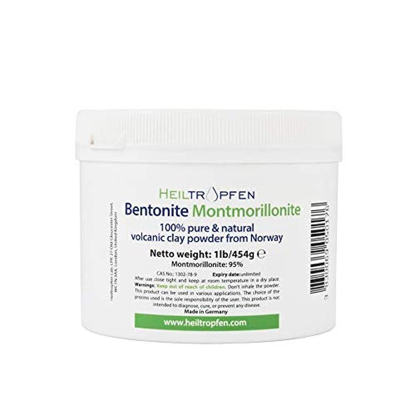 無傷内部国歌ベントナイトモンモリロナイトパウダー、1lb-454g、ウルトラファイン、モンモリロナイト含有量:95%、天然ミネラルダスト。bentonite