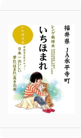 平成29年産 福井県産 いちほまれ (越南291号) 白米2kg 栽培期間中 農薬・化学肥料不使用