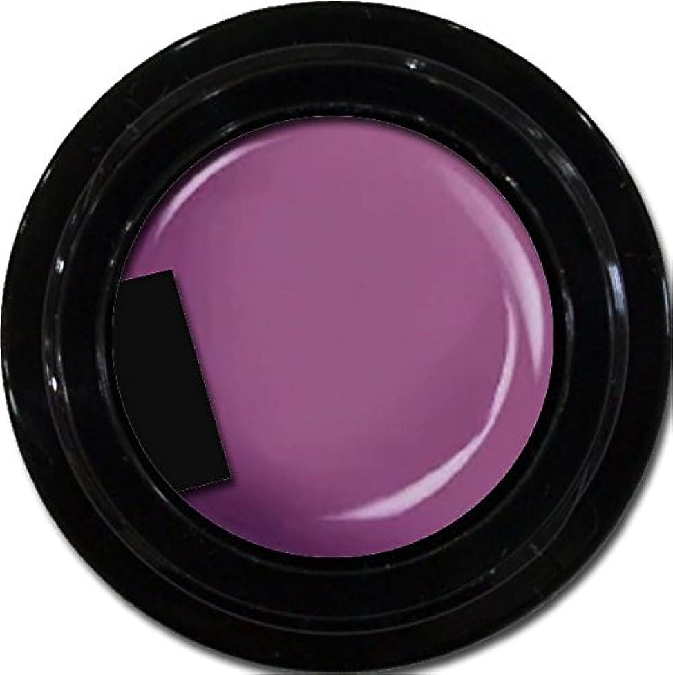 座る主張するチキンカラージェル enchant color gel M509 StarPurple 3g/ マットカラージェル M519スターパープル 3グラム