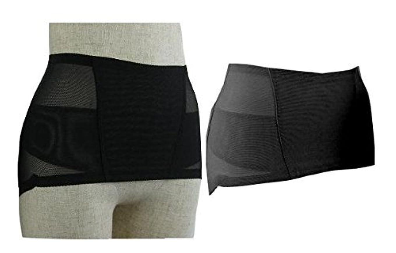 仮定、想定。推測トリム追う履くタイプのマイナスイオン骨盤サポーター トルマリン ゲルマニューム 男女兼用 ブラック (Lウエスト72~82cm ヒップ88~102cm)
