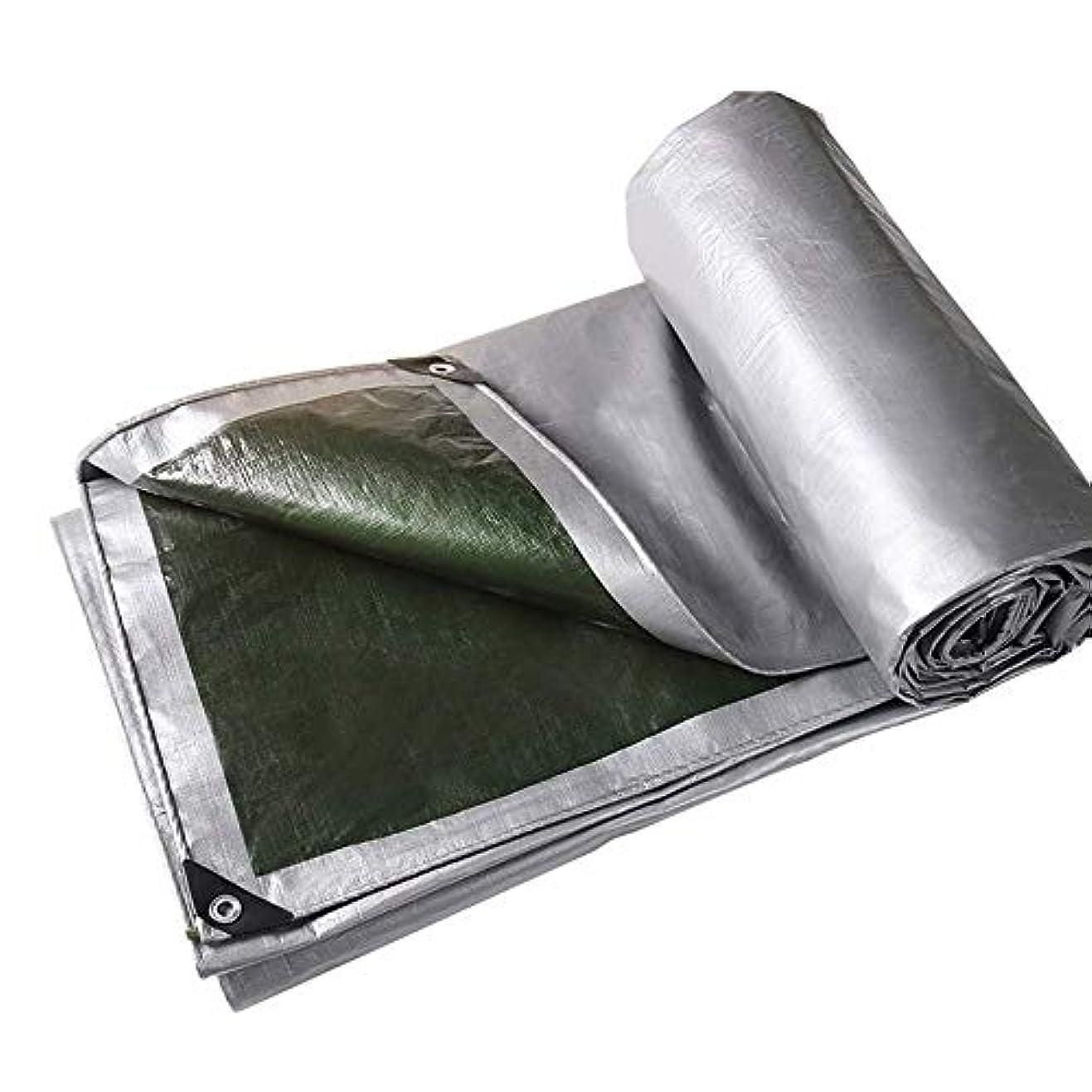 端異常クレアで利用可能な屋外の梅雨防水防水シート頑丈な多機能保護防水シート (サイズ さいず : 10*12m)