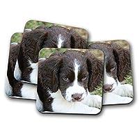 4セット - イングリッシュ・スプリンガー・スパニエルコースター - 犬の恋人楽しい犬ペットギフト#15723