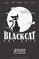 """Schwarze Katze im Mondlicht """"Black Cat"""" Kalender 2020: Jahreskalender fuer Katzen- und Tierfreunde"""