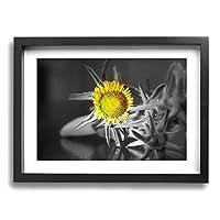 黒と白の黄色い花キャンバス絵画 超薄型 額入り(30cm*40cm) インテリア アートポスター 油絵 写真 現代絵画 壁飾り 壁掛け 風景 自然 動植物 玄関 木製の枠 贈り物