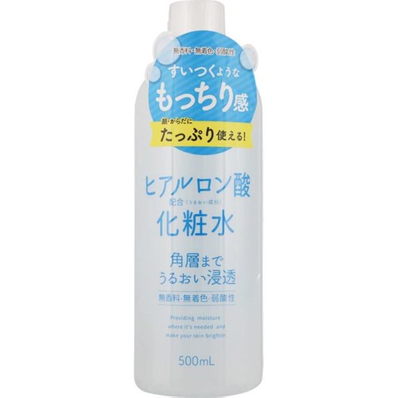 ジャニス過敏なプラスチックスキンローション ヒアルロン酸 500mL