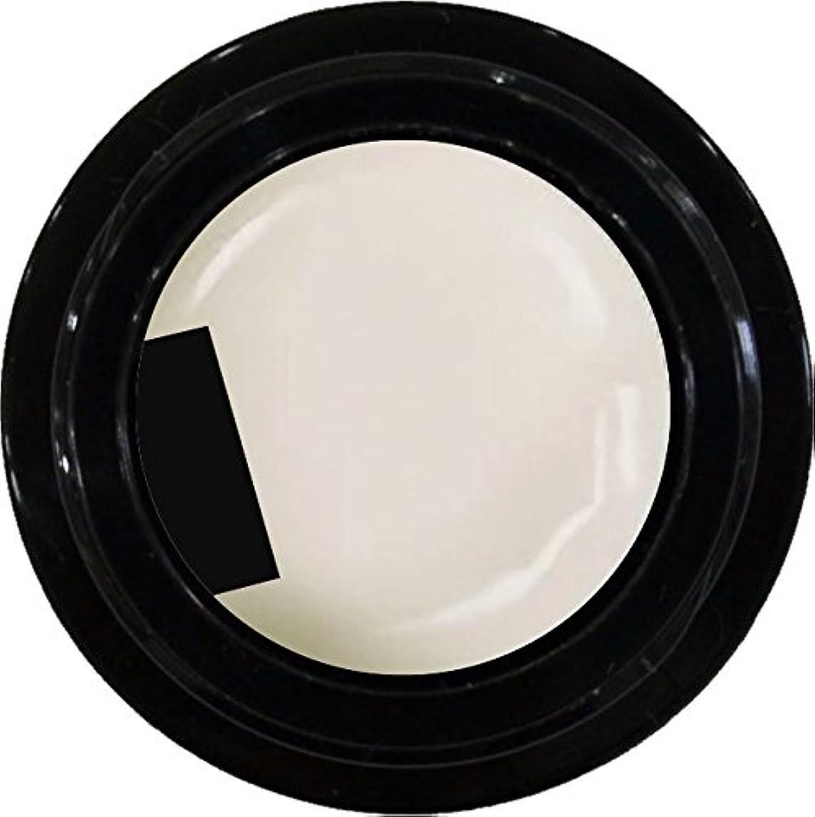 アピール教室不適切なカラージェル enchant color gel M005 RetroWhite 3g/ マットカラージェル M005 レトロホワイト 3グラム