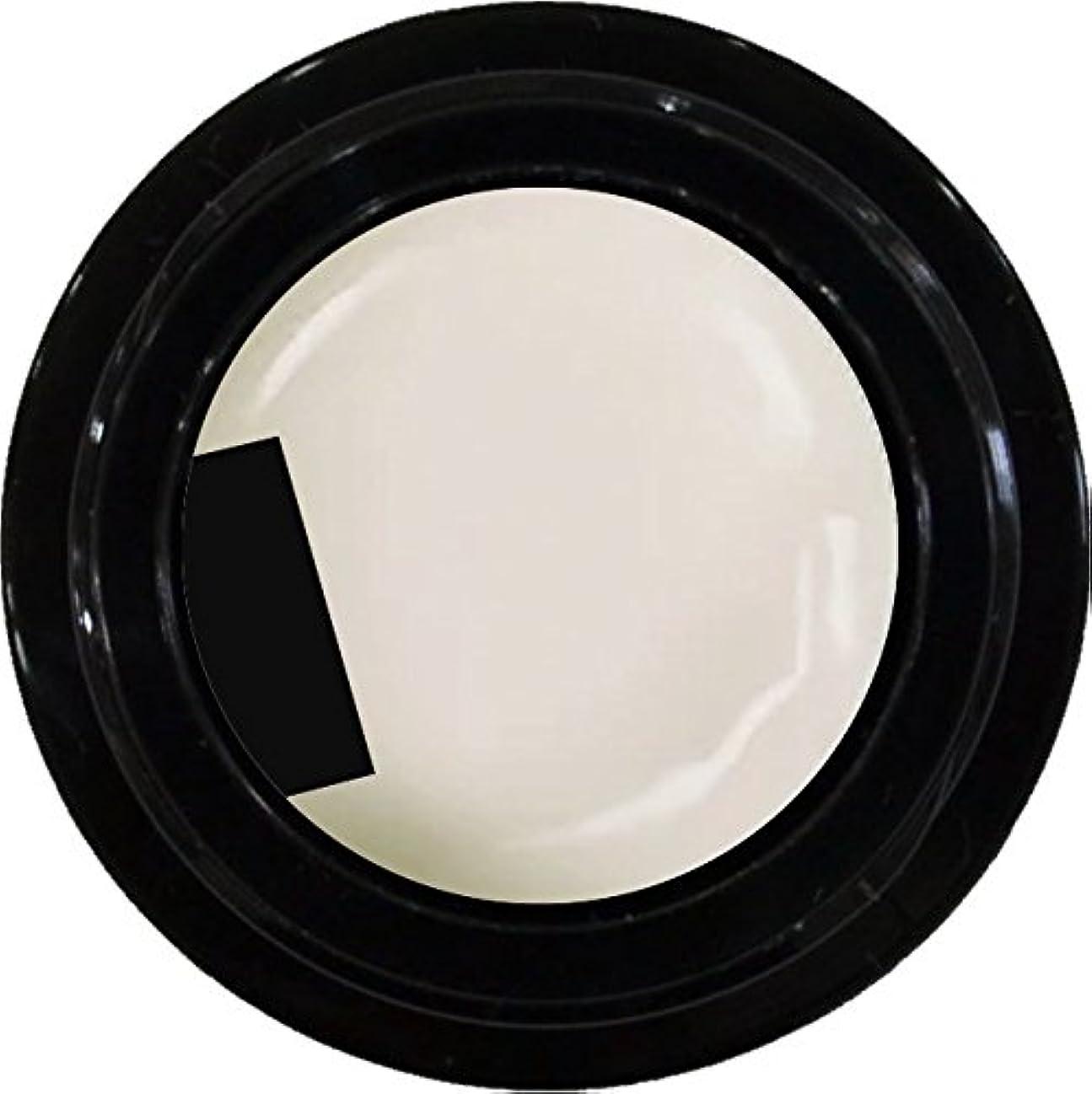 プラグマイコン合意カラージェル enchant color gel M005 RetroWhite 3g/ マットカラージェル M005 レトロホワイト 3グラム