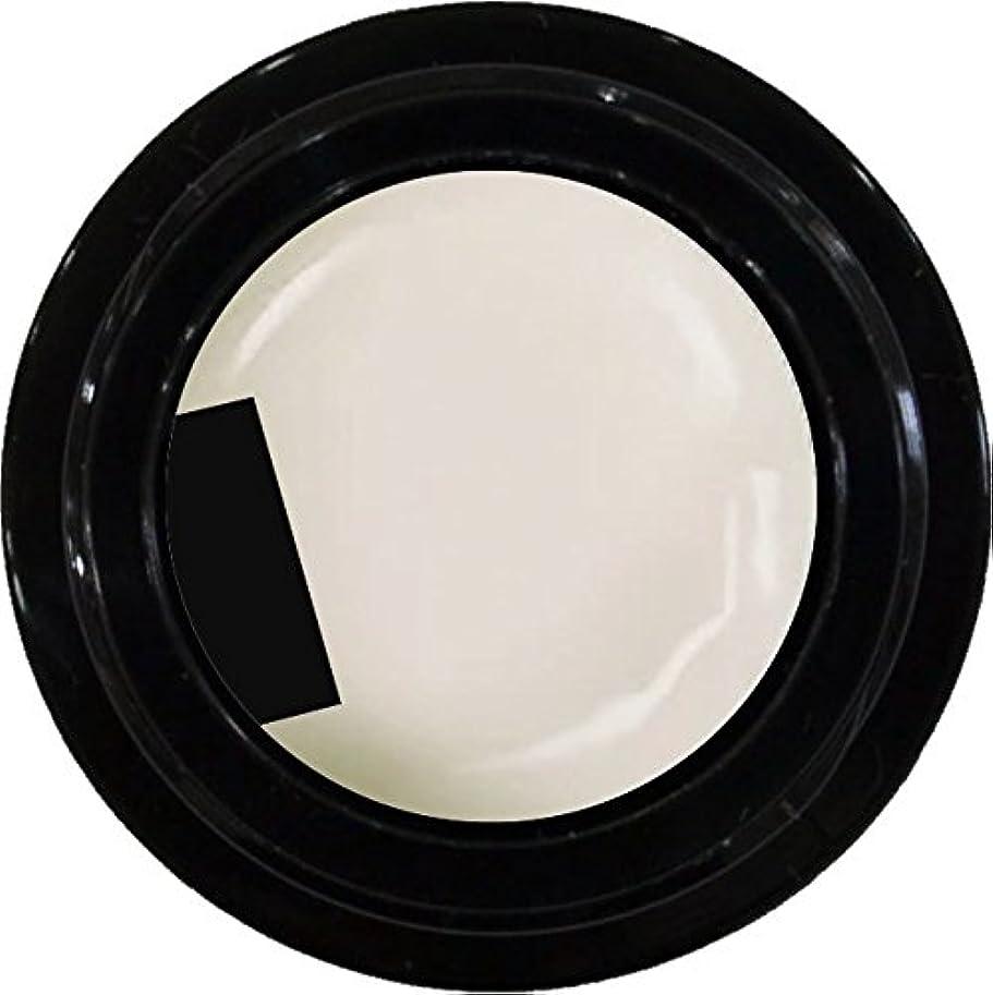壊れたモールス信号一カラージェル enchant color gel M005 RetroWhite 3g/ マットカラージェル M005 レトロホワイト 3グラム