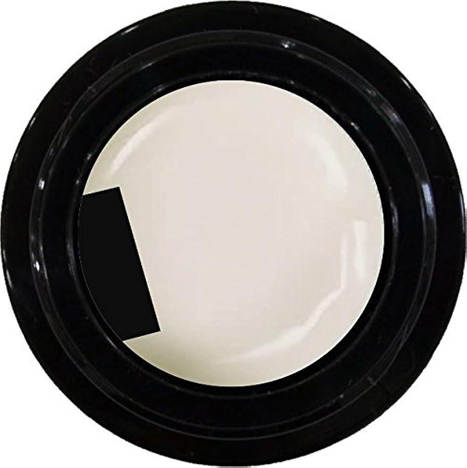 痴漢没頭すると闘うカラージェル enchant color gel M005 RetroWhite 3g/ マットカラージェル M005 レトロホワイト 3グラム