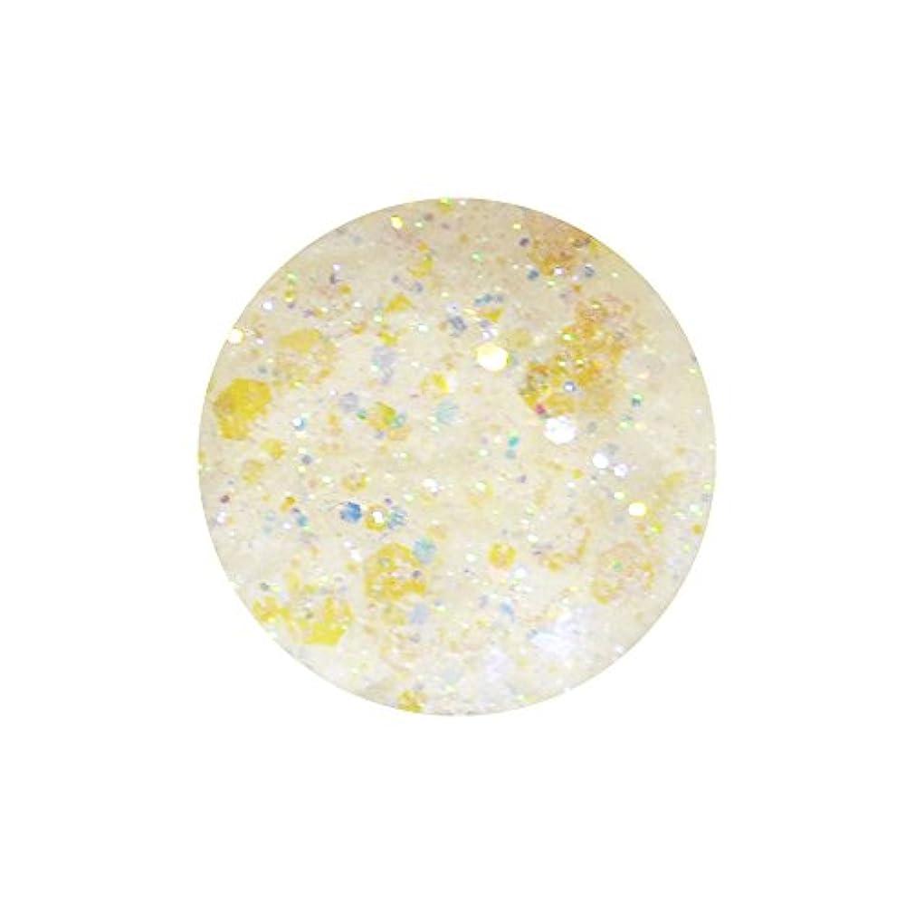 irogel イロジェル 超微粒子マジカルグリッター + ホログラム 【ホワイトMIX】