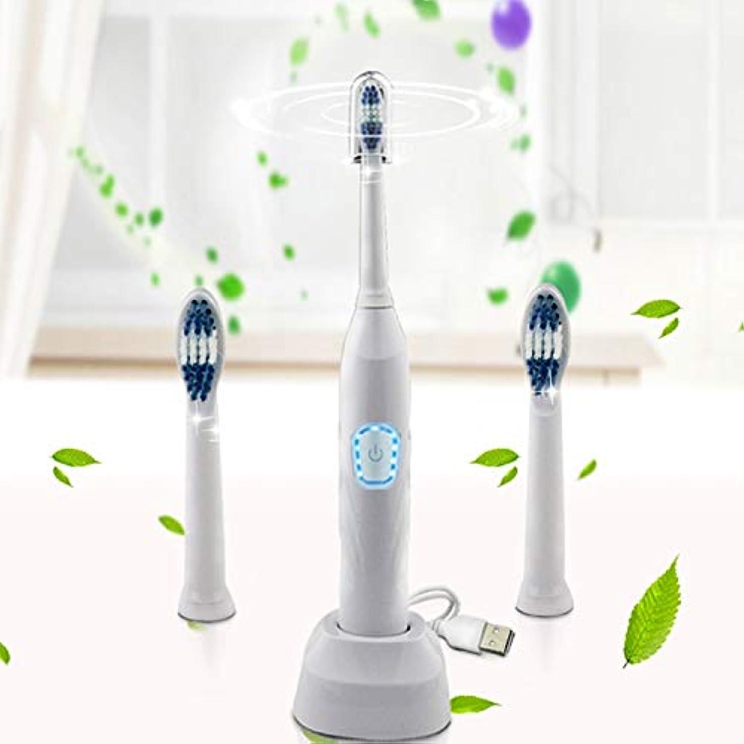 原告小切手十分ですYPZHEN ユニバーサルアダルト子供USB充電IPX7防水電動歯ブラシ
