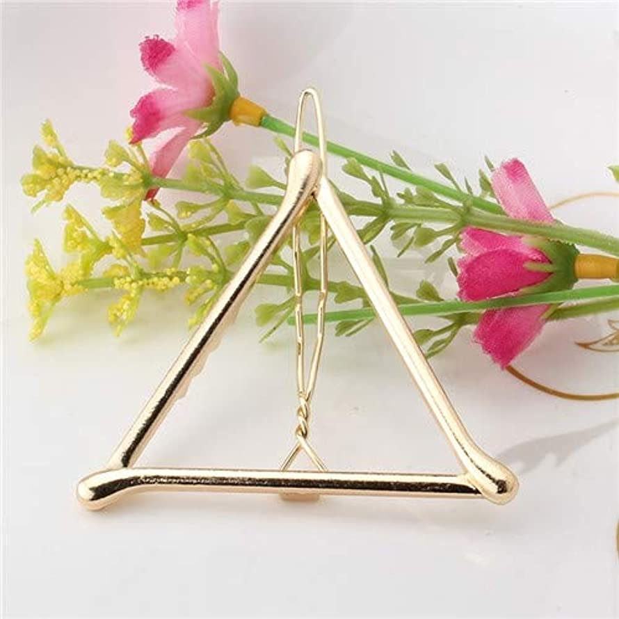 繊細エール小道具フラワーヘアピンFlowerHairpin YHM 2ピースファッション女性女の子合金金属三角形サークルムーンヘアクリップジオメトリヘアピンホルダーヘアアクセサリー(シルバーリップ) (色 : Gold Triangle)