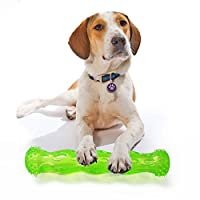 音の出る玩具 犬 噛むおもちゃ デンタルケア 歯磨き 壊れない 丈夫 柔らかい 耐久性 安全無毒 ペット用品 TPR材質 小型犬用 中型犬用 (M, グリーン)