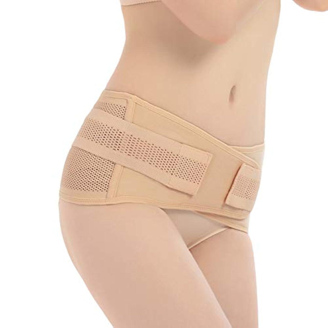 Funtoget 妊娠中の女性産後骨盤正しいベルト腹巻き取る骨盤骨盤整形外科用ベルト