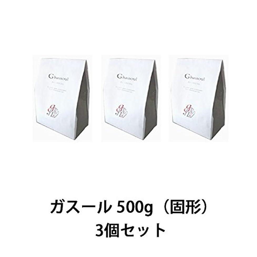 トランスミッションパパちっちゃい【ナイアード】ガスール 固形 500g ×3個セット