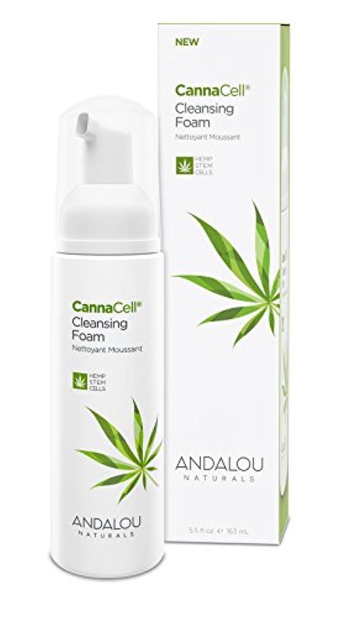 フルーティー眉をひそめる貸すオーガニック ボタニカル 洗顔料 洗顔フォーム ナチュラル フルーツ幹細胞 ヘンプ幹細胞 「 CannaCell® クレンジングフォーム 」 ANDALOU naturals アンダルー ナチュラルズ