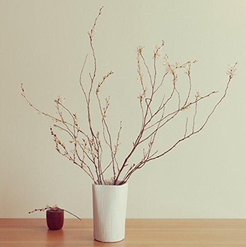 plage 優美な曲線を描くデザインとハンドメイドのテクスチャが魅力。・陶器 花瓶