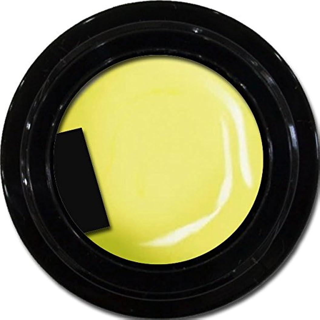 コンピューターゲームをプレイする広告復讐カラージェル enchant color gel M601 Lemonade 3g/ マットカラージェル M601 レモネード 3グラム