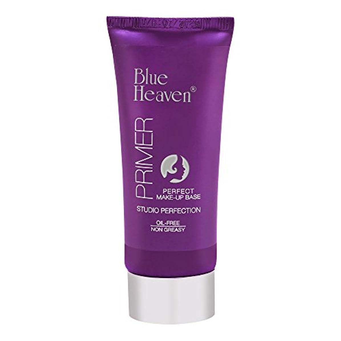 複合体操ネットBlue Heaven Studio Perfection Primer, Clear, 30g