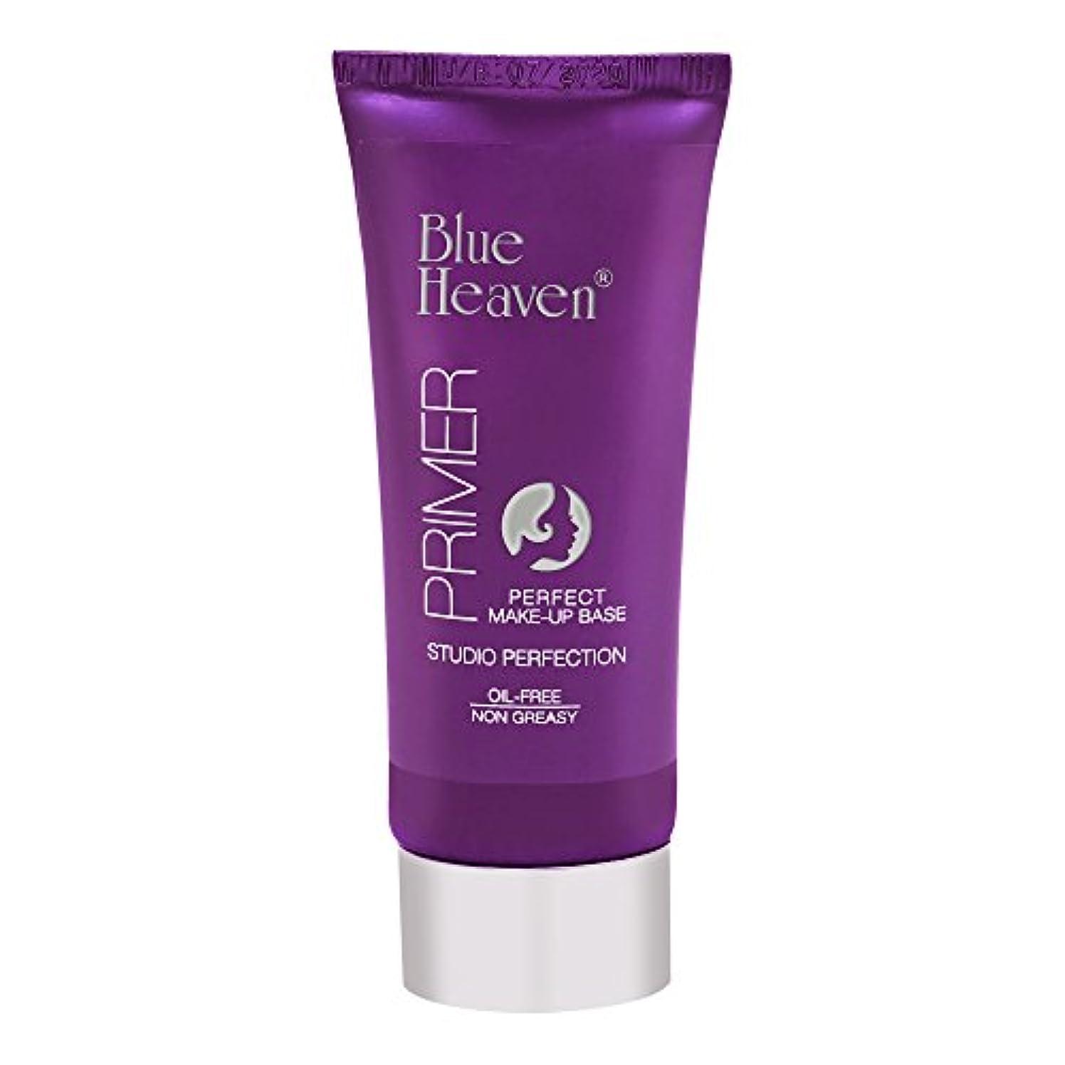 値するブラウズ歯科のBlue Heaven Studio Perfection Primer, Clear, 30g