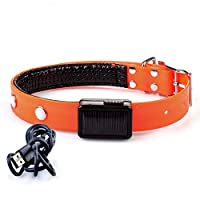 CAFUTY ペット用品 TPUソーラー充電襟 発光ネックロープ usb充電フラッシュ襟 (Color : オレンジ, サイズ : Solar charging (XL))