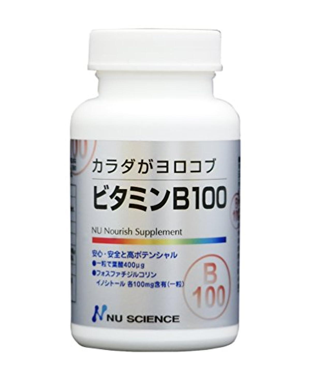 続けるアレイ事実ビタミンB100 60粒
