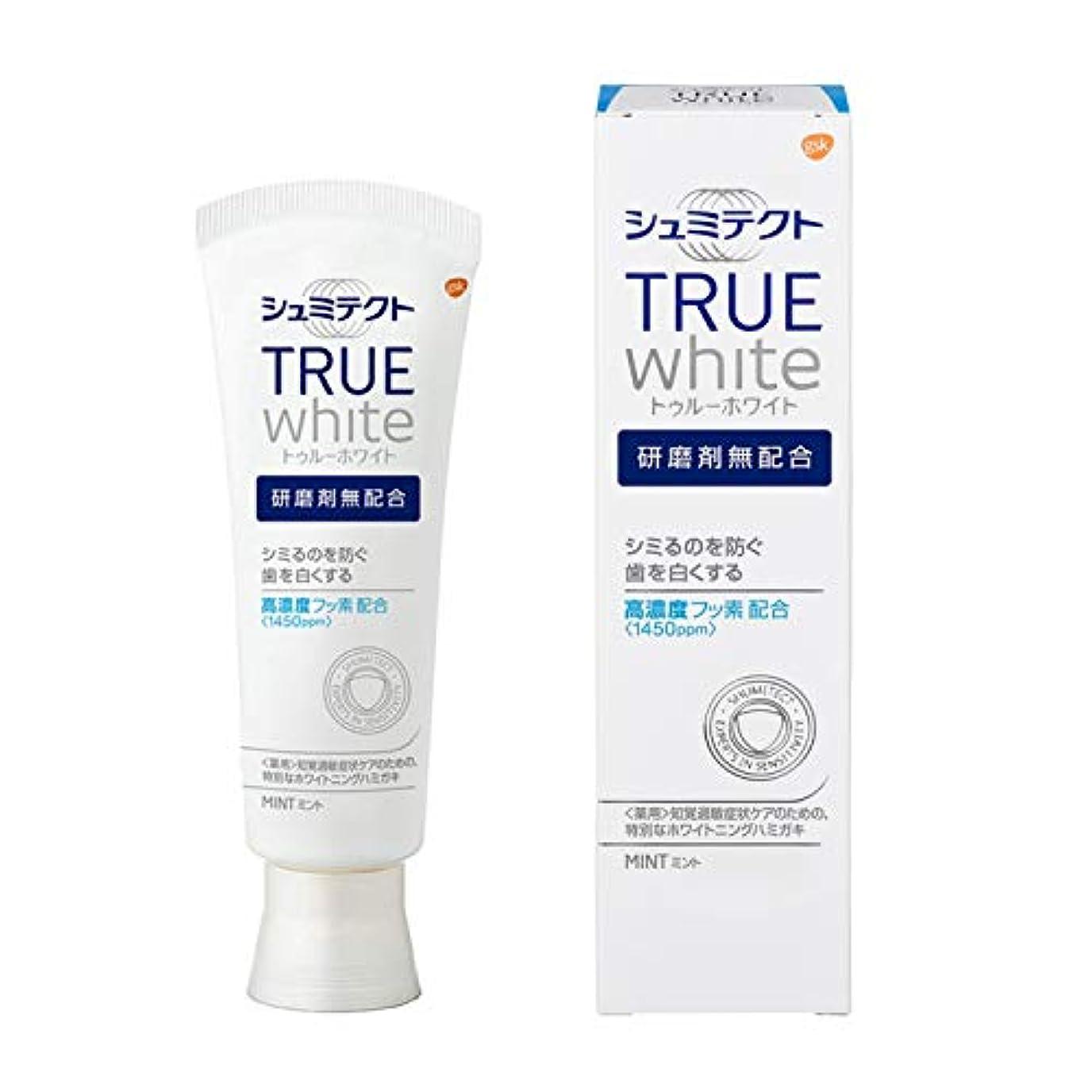 実験的追い出すクラウド[医薬部外品]薬用シュミテクト トゥルーホワイト 研磨剤無配合 知覚過敏予防  歯磨き粉 単品 80g