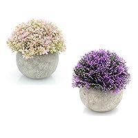 2個セット造花 人工観葉植物 光触媒植物 インテリアにあわせやすい人工植物、インテリア 雑貨、親友への贈り物としても適する (小さな鉢植えの植物) (E)
