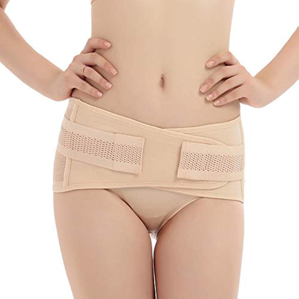 Tenflyer 妊娠中の女性産後骨盤正しいベルト腹巻き取り骨盤骨盤整形外科用ベルト