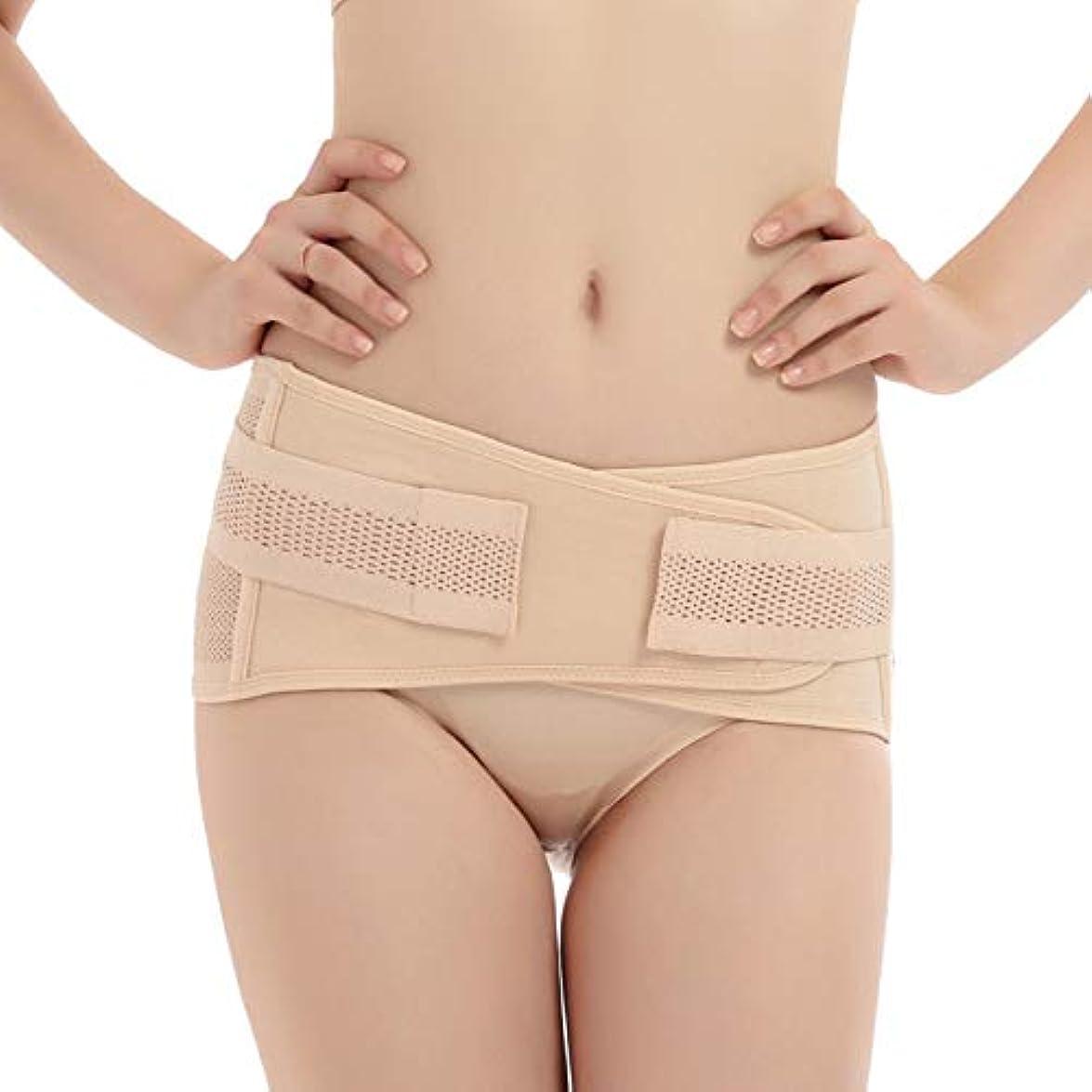 植物学基本的なここにTenflyer 妊娠中の女性産後骨盤正しいベルト腹巻き取り骨盤骨盤整形外科用ベルト