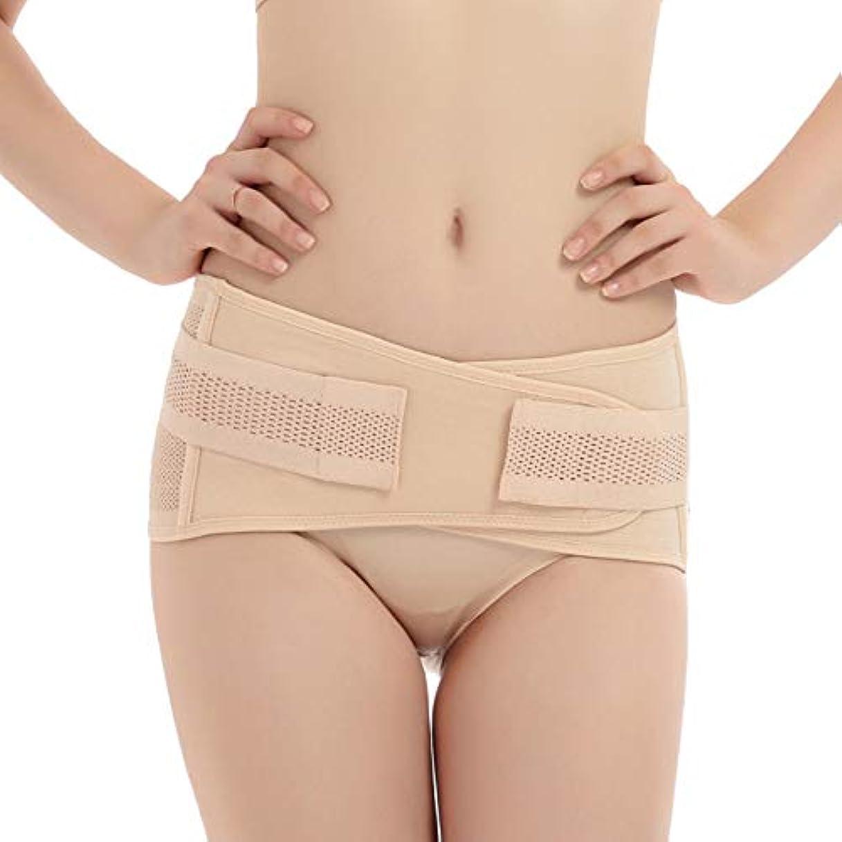 コアセージビンTenflyer 妊娠中の女性産後骨盤正しいベルト腹巻き取り骨盤骨盤整形外科用ベルト