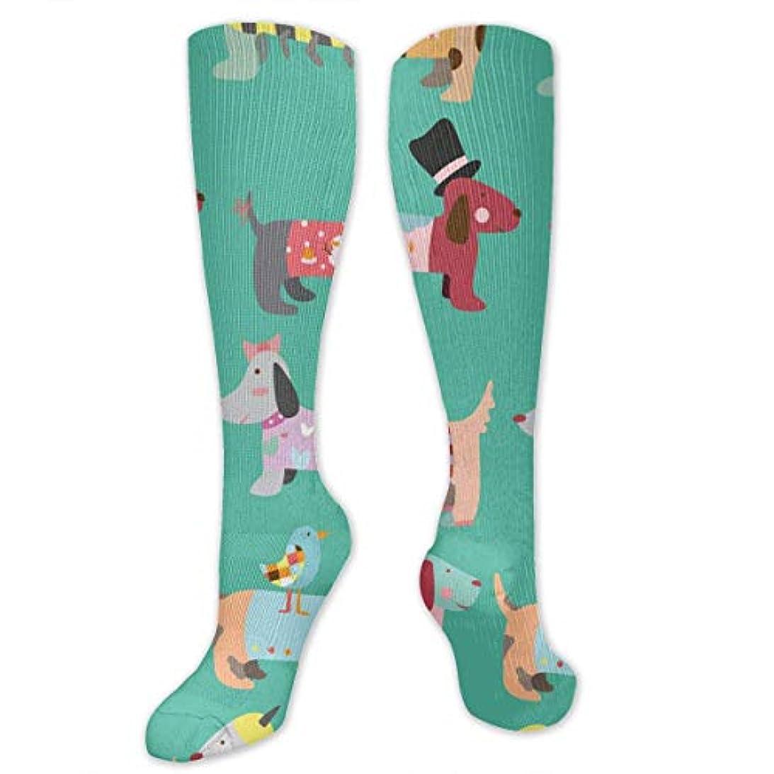 連隊くそー製造業靴下,ストッキング,野生のジョーカー,実際,秋の本質,冬必須,サマーウェア&RBXAA Women's Winter Cotton Long Tube Socks Knee High Graduated Compression...