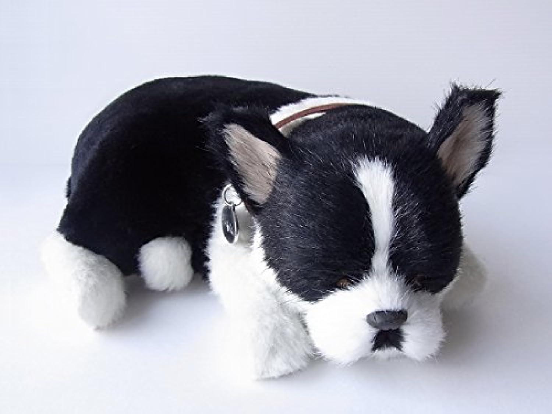 本物そっくりに眠る犬のぬいぐるみ|パーフェクトペット|フレブル(ボストンテリア)