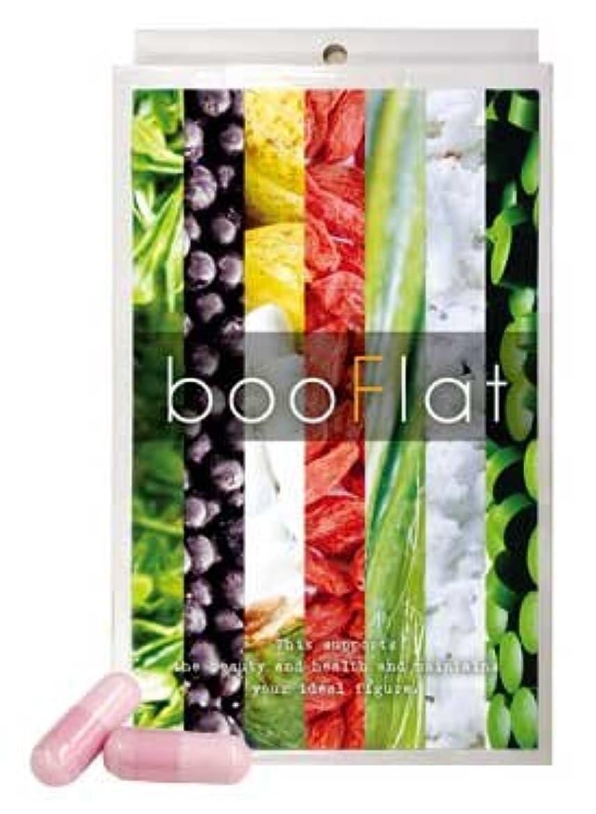 経済的考慮不承認booFlat ブーフラット (1個)