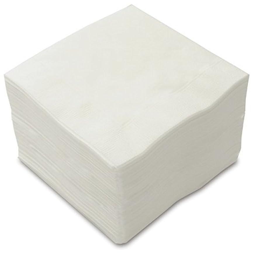 ドット部分的に実現可能性カラー4折2プライペーパーナプキン「白無地」(50枚)