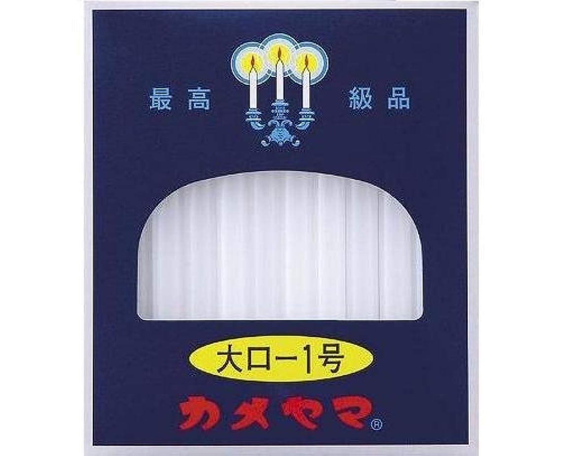 ママ利用可能名前大ロ-ソク<1号> 225g