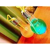 光る電球ボトル 【光るボトル 光るおもちゃ 景品 イベント 子供会 お祭り 縁日 玩具 夏祭り 光り物】