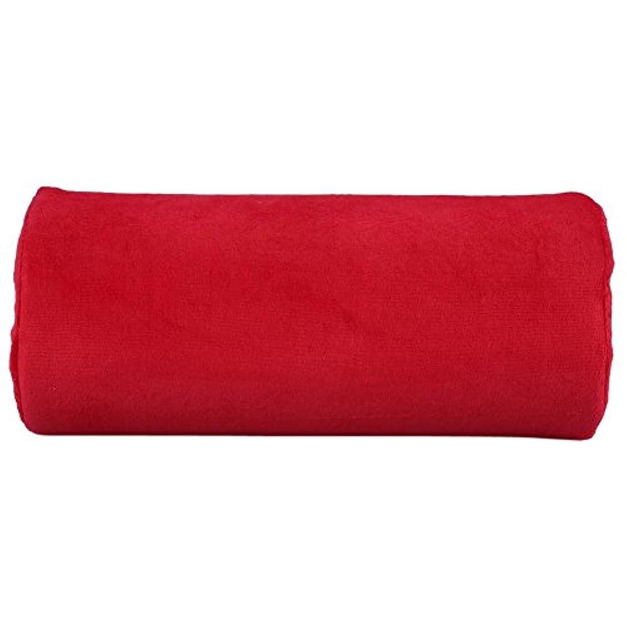 光沢アナロジーもっと少なくサロンハンドレストクッション、ネイルアートソフトピロー(赤), パーソナルハンドレストクッションネイルアートぬいぐるみ枕取り外し可能なマニキュアメイクツールレッド
