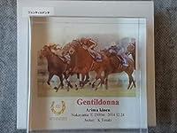 アクリルオブジェジェンティルドンナ有馬記念