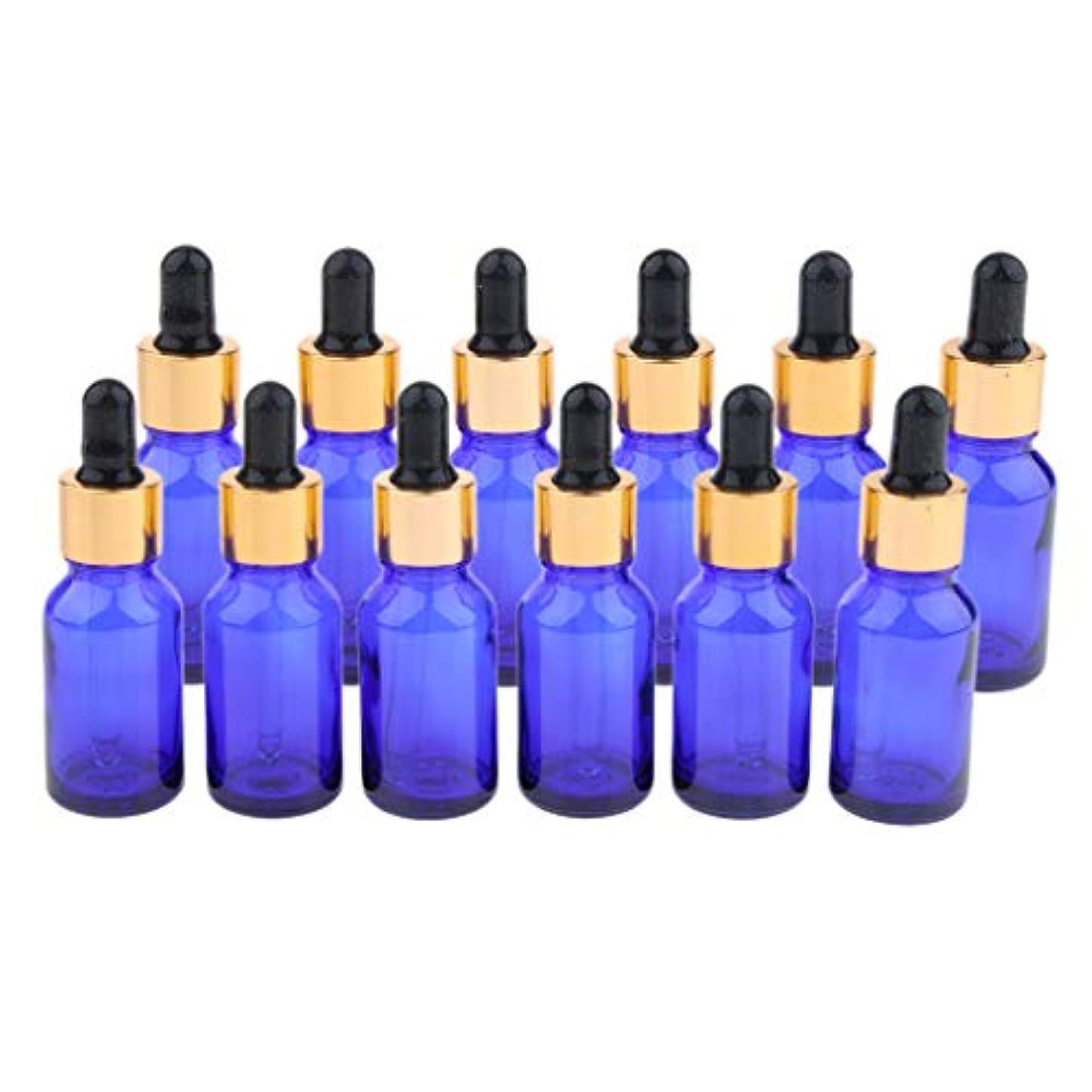 高度な移植動詞ガラス ドロッパーボトル エッセンシャルオイル スポイト付き 遮光瓶 アロマオイル瓶 12個セット
