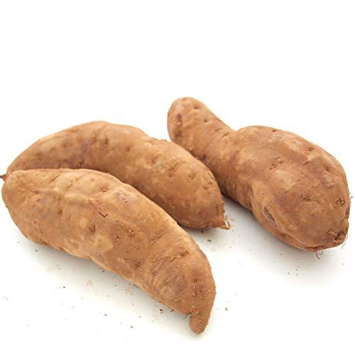 紫芋 3kg 鹿児島県産 無農薬栽培