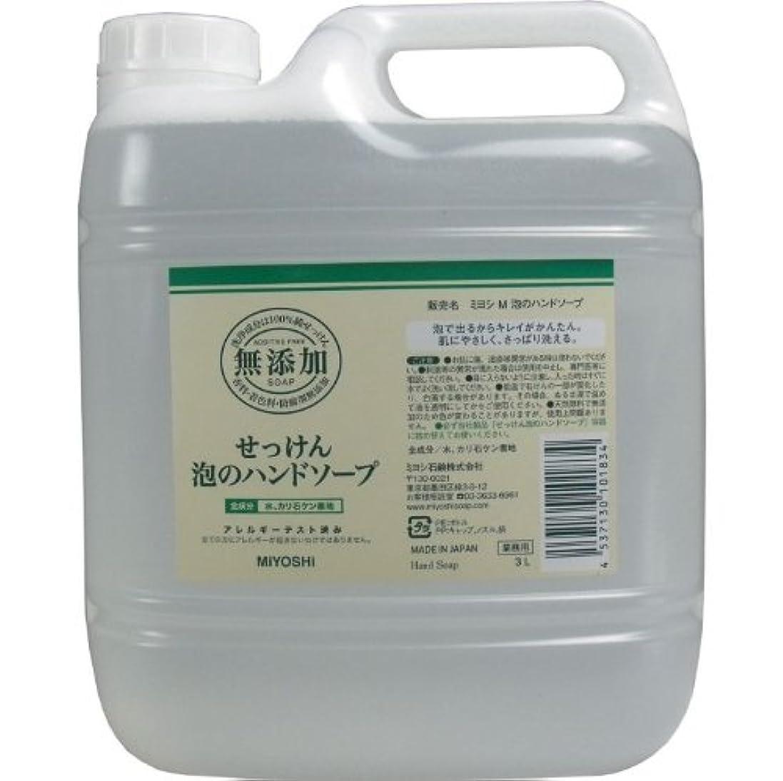 クレーン才能いろいろ泡で出るからキレイが簡単!家事の間のサッと洗いも簡単!香料、着色料、防腐剤無添加!(業務用)3L【5個セット】