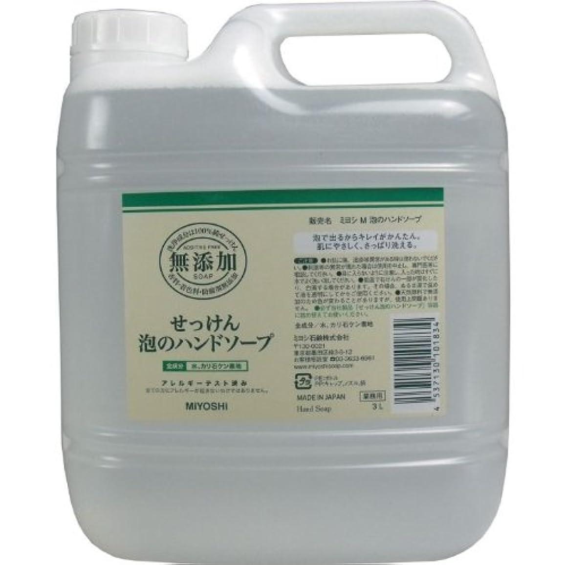体細胞冊子交通泡で出るからキレイが簡単!家事の間のサッと洗いも簡単!香料、着色料、防腐剤無添加!(業務用)3L【3個セット】