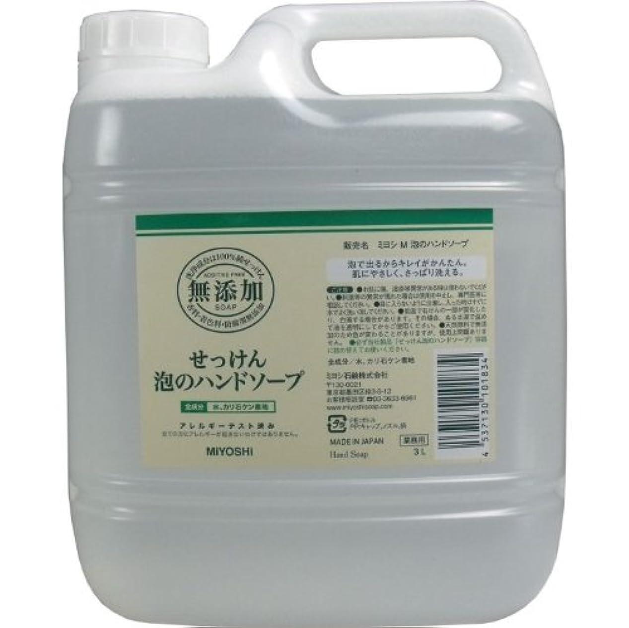 環境保護主義者引く体系的に泡で出るからキレイが簡単!家事の間のサッと洗いも簡単!香料、着色料、防腐剤無添加!(業務用)3L【5個セット】