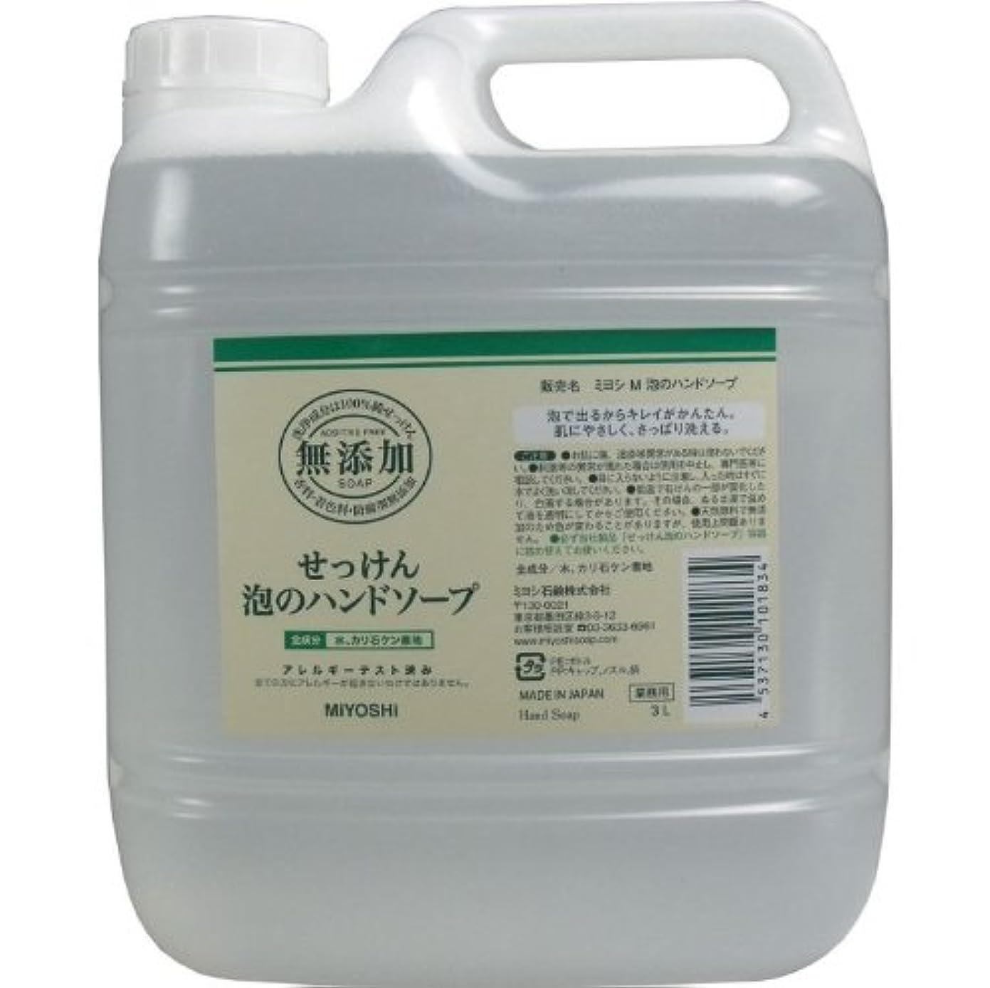 バンカー慣らすウミウシ泡で出るからキレイが簡単!家事の間のサッと洗いも簡単!香料、着色料、防腐剤無添加!(業務用)3L