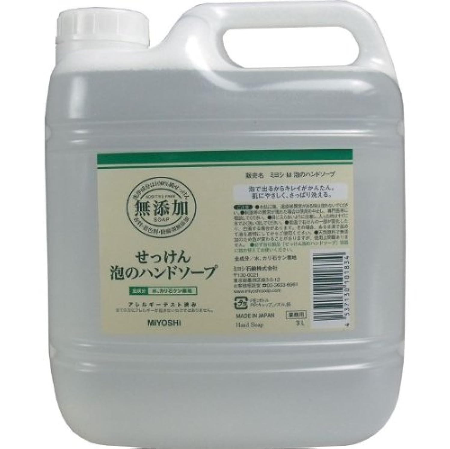 泡で出るからキレイが簡単!家事の間のサッと洗いも簡単!香料、着色料、防腐剤無添加!(業務用)3L