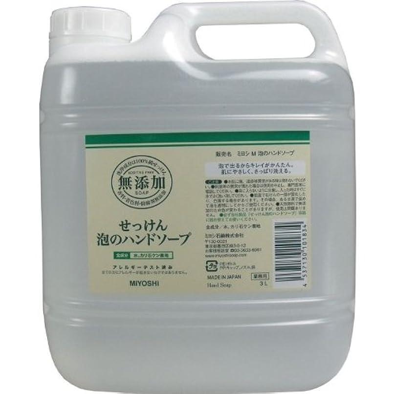 受取人航空近所の泡で出るからキレイが簡単!家事の間のサッと洗いも簡単!香料、着色料、防腐剤無添加!(業務用)3L【5個セット】
