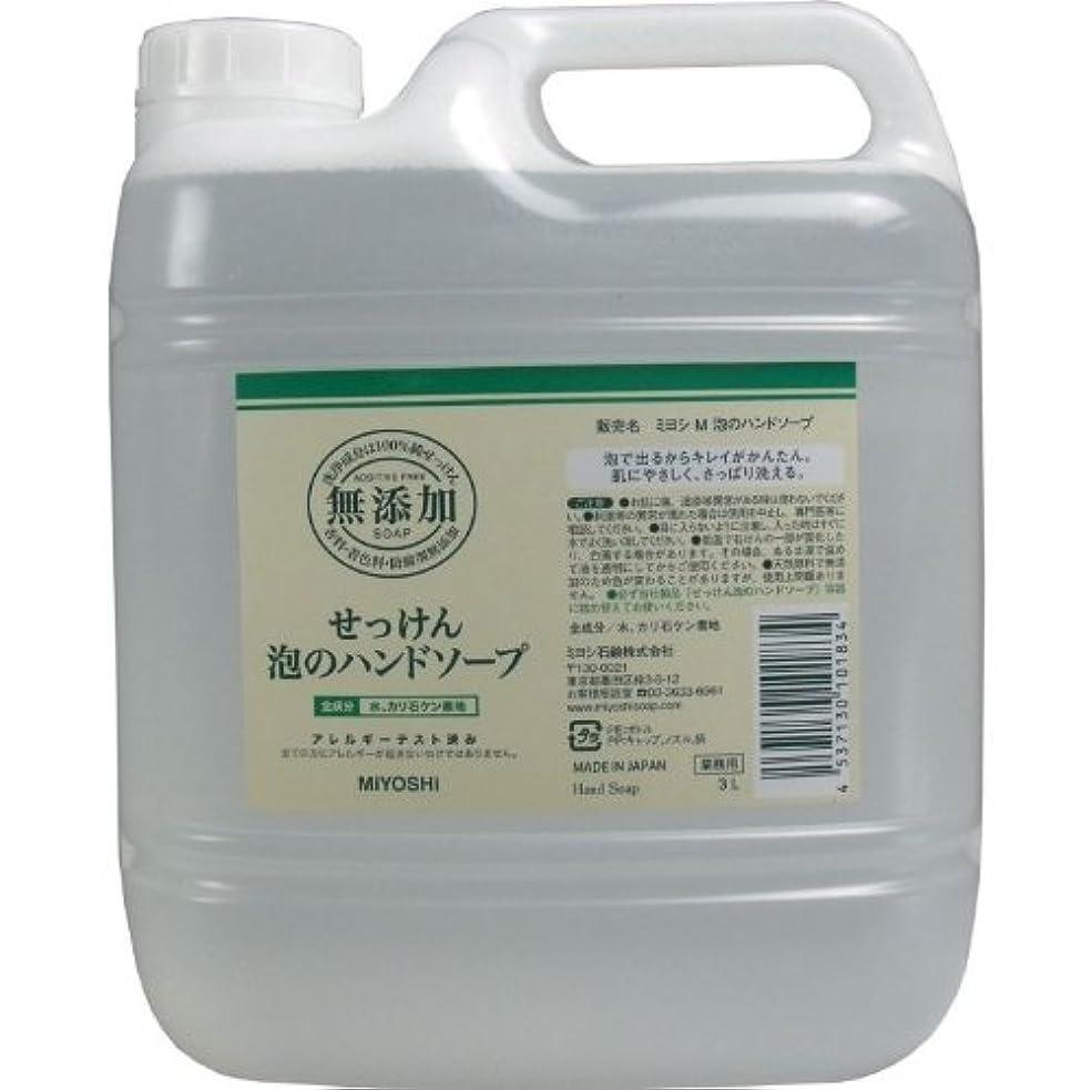腹部真似る発揮する泡で出るからキレイが簡単!家事の間のサッと洗いも簡単!香料、着色料、防腐剤無添加!(業務用)3L【3個セット】