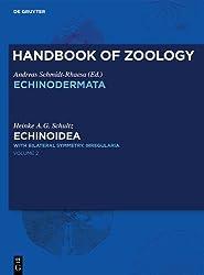 Echinoidea: With Bilateral Symmetry Irregularia