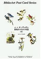 ねこの引出し☆J.J.オーデュボン 野鳥のイラスト特選(2)ジークレー印刷に拠るワンランク上の飾れるポストカードセット